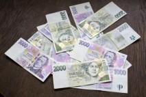 Potřebujete peníze rychle a v hotovosti? Pak vyzkoušejte nabídku od soukromého investora: Půjčím peníze na směnku!